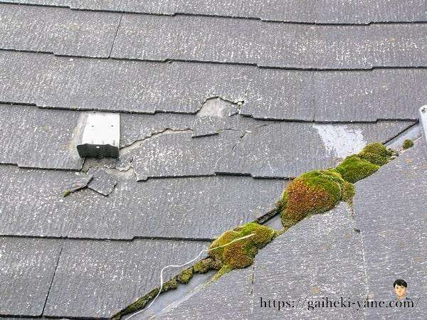 屋根の劣化箇所(コケ)